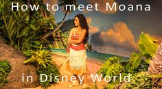Disney World Tips for Character Meet and Greets | How to meet Moana in Walt Disney World Hollywood Studios