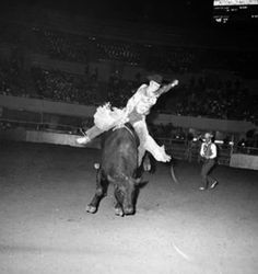 STORM CLOUD.  RCA World Champion Cowboy Jim Shoulders of Henrietta, Oklahoma on #400 - Bull Riding - National Finals Rodeo - Los Angeles, California - 1962 - Photo by Ferrell Butler from The Bull Pen Collection.