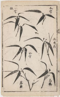 Philadelphia Museum of Art - Collections Object : Tuhui zongyi (Principles of Painting): Bamboo Leaves Chinese Artwork, Chinese Painting, Japanese Watercolor, Japanese Art, Sumi E Painting, Bamboo Tattoo, Bamboo Art, Bamboo Leaves, Indian Art Paintings