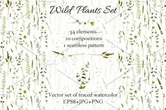 Wild plants set by cat_arch_angel on @creativemarket