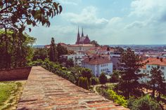 The Cathedral of Saints Peter and Paul as seen from Špilberk Castle, Brno, Czech Republic – Ben Finch St Peter And Paul, Amazing Buildings, Czech Republic, Wander, Cathedral, Saints, Sidewalk, Castle, Mansions