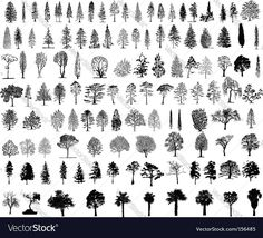 Vector image of Tree silhouettes Vector Image, includes tree, forest, outside, black & landscape. Illustrator (.ai), EPS, PDF and JPG image formats.