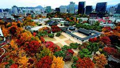 서울 덕수궁. Deoksugung, Seoul, Korea.