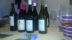 Naturale2013 a Navelli - I vini di Denavolo (Giulio Armani)