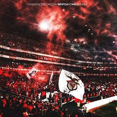 From breaking news and entertainment to sports and politics, get the full story with all the live commentary. Benfica Wallpaper, Ultras Football, Juventus Fc, Big Love, Football Fans, Sports And Politics, Ps4, Planners, Boys