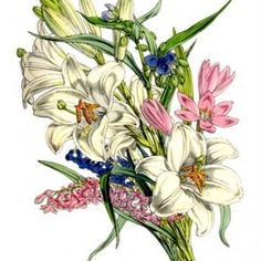 Instant Art Printable – Lovely Lovely Lily Bouquet