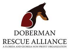 doberman rescue logos | Doberman Rescue Alliance Logo by Danielle Paulet