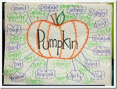 describe pumpkin inside/outside using adjectives