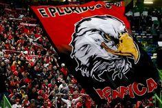 Sporting vs Benfica - LUSA/TIAGO PETINGA