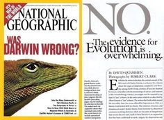 Article in National Geographic -Evolution - Was Darwin Wrong? The evidence says no.  Evolution is deeply persuasive—a theory you can take to the bank. The supporting evidence is abundant, various, ever increasing, solidly interconnected, and easily available in museums, popular books, textbooks, and a mountainous accumulation of peer-reviewed scientific studies. No one needs to accept evolution merely as a matter of faith.