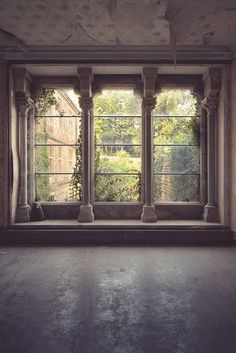 This style  of window would look great with the plaster work in the Grand Room...where can we carry these through?