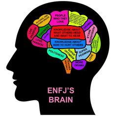 ENFJ's brain