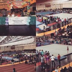 2016 PA level 7 state championships! Congrats to all of the athletes and coaches #MancinoMeets #MancinoMats