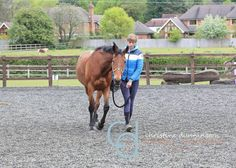 Aspire Equestrian Riding Academy Intensive Training Camp Spring 2017
