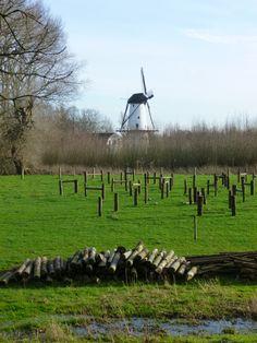De Kooiroute start bij De Stapelbakker op landgoed Heerlijkheid Mariënwaerdt te Beesd.  12 km