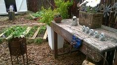 Herb Garden @ Bren's Backyard