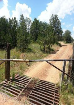Biden cattle guards