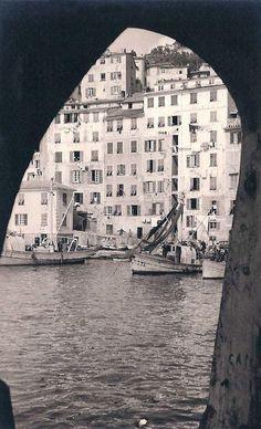 Porticciolo, Camogli, Italy (1951)
