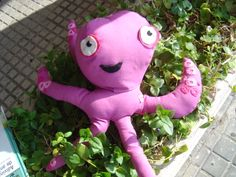 Pulpito rosa