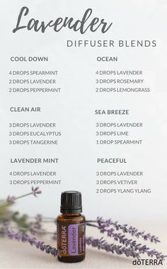 Learn all about lavender essential oil? Included is all there is to know about doTERRA lavender essential oil uses including DIY, food & diffuser recipes Lavender Essential Oil Uses, Lavender Oil Benefits, Lavender Oil Uses, Grapefruit Essential Oil, Cedarwood Essential Oil Uses, Wild Orange Essential Oil, Cedarwood Oil, Lemongrass Essential Oil, Lavender Fields