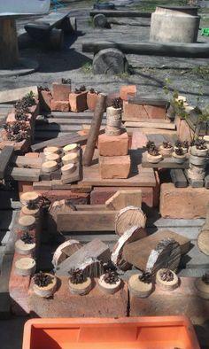 Bricks, small tree cookies, pine cones, etc.
