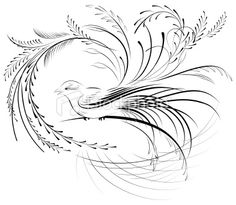 Google Image Result for http://i.istockimg.com/file_thumbview_approve/10754980/2/stock-illustration-10754980-victorian-calligraphy-bird.jpg