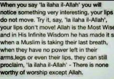 When you say 'la ilaha il-Allah' you will notice something very interesting, your lips do not move. Allah is the Most Wise and in His Infinite Wisdom he has made it so when a Muslim is taking their last breath, when they have no power left in their arms, legs or even their lips, they can still proclaim, 'la ilaha il-Allah'