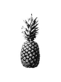 #tattoo design : pineapple