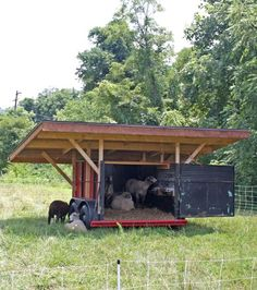 Our friends at Veterans Healing Farm asked for help designing their new Community Center, which was to be made entirely out of shipping containers. Sheep Shelter, Goat Shelter, Animal Shelter, Sheep House, Sheep Pen, Goat Shed, Barn Layout, Raising Farm Animals, Goat House