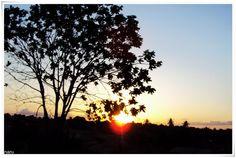 Belos raios desse sol ... ♫