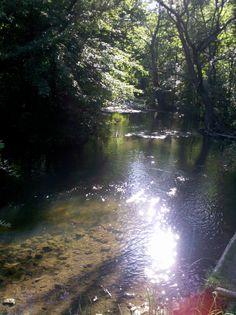 Clinton River sparkle