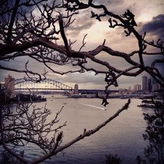 """@seeaustralia's photo: """"a gloomy, but beautiful shot, of Sydney Harbour photographed by @martinec"""""""