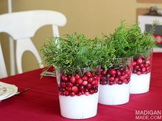 Amazingly simple cranberry centerpieces. These would be perfect for fall or wintertime.