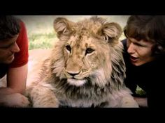 """The LOVE between 2 men + """"A LION named Christian"""" - The whole Documentary (Full length)"""