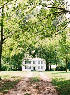 Tuckahoe Plantation.  Photo by Katie Stoops.