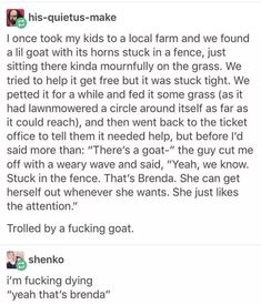 Brenda the goat! Funny Tumblr Posts, My Tumblr, The Funny, Funny Cute, That's Hilarious, Lol, Funny Stories, Short Stories, Crazy Stories