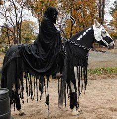 15 Awesome And Easy To Make Horse Halloween Costumes