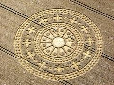 Unbelievable Crop Circles