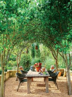 Texas Gardening, Organic Gardening, Vegetable Gardening, Container Gardening, Building A Raised Garden, Raised Garden Beds, Raised Beds, Diy Garden, Dream Garden