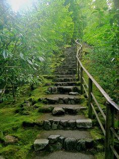Bridges, Windows, Doors & Stairs: Photo