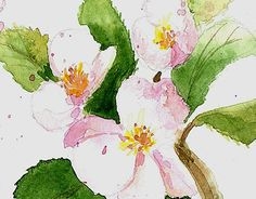 """Check out new work on my @Behance portfolio: """"postcard """"Flowers of apple"""""""" http://on.be.net/1djGjyr"""