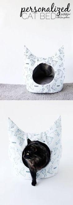 Katzenhöhle Mehr