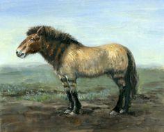 North American Pleistocene Horse by Philip Newsom
