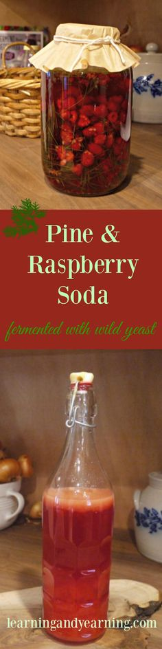 Inspired by a new cookbook, I've created a wonderful foraged combination - pine needle and raspberry soda which is fermented with wild yeast!