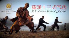 羅漢十三式气功 · 13 Luohan Style Qi Gong - YouTube