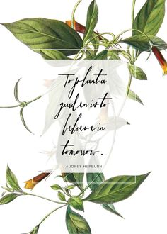 Free botanical printable with Magpie Paper Work's Saissant font via Happy Hands Project