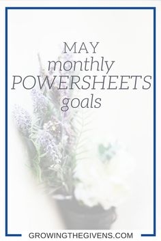 A look at my monthly goals set by using Lara Casey's Powersheets