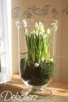 Beautiful spring decoration Best Picture For garden decoration indoor For Your Taste You are looking for something, and it is going to tell you exactly what you are looking for, and you didn't find that … Deco Floral, Arte Floral, Ikebana, Garden Bulbs, Spring Crafts, Spring Flowers, Indoor Plants, Flower Designs, House Plants