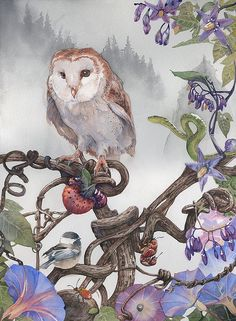 Owl2 by Butch Belair-watercolor
