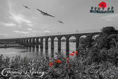 Beautiful poignant photo /Berwick Royal Border Bridge